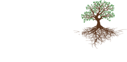 Orchard Consulting Group